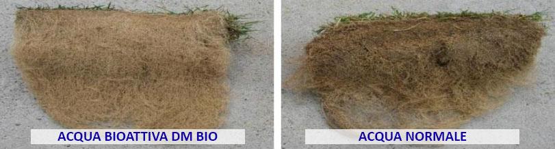 agricoltura - test acqua dmbio su prato erboso